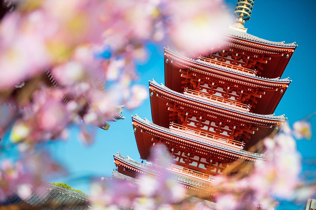 Estudiar en Japón y descubrir Tokyo