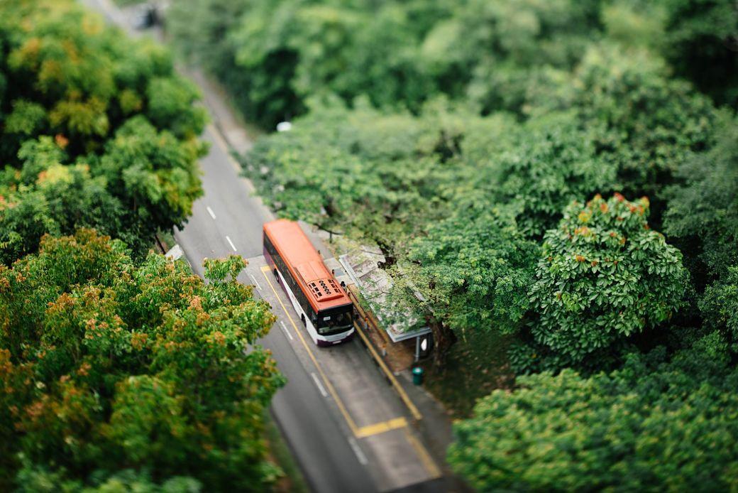 Autobús en un paisaje de color verde