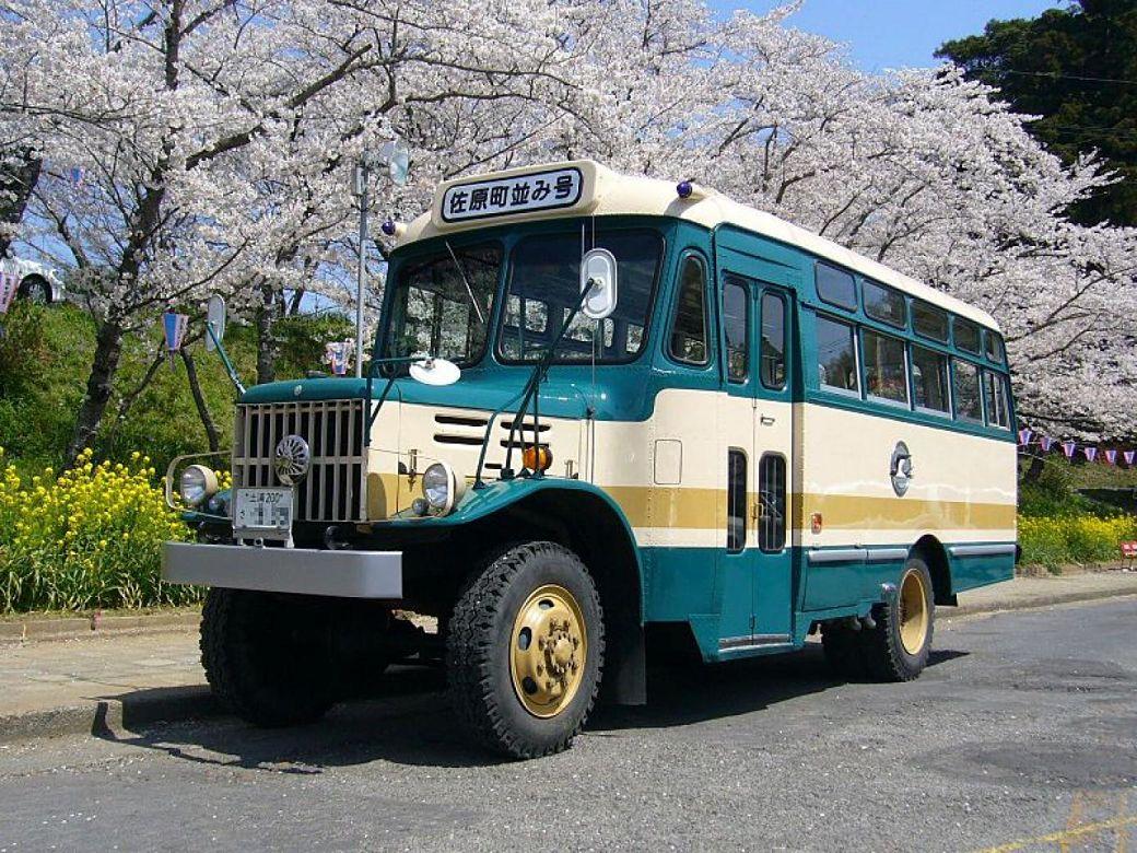 Autobuses en Japón junto a paisaje de flores de cerezo