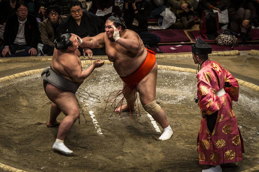 Combate de sumo en Japón