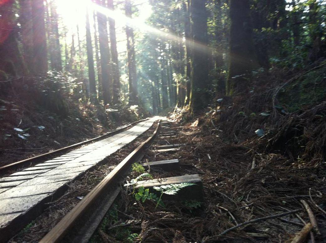 Paisaje isal de Yakushima, Japón