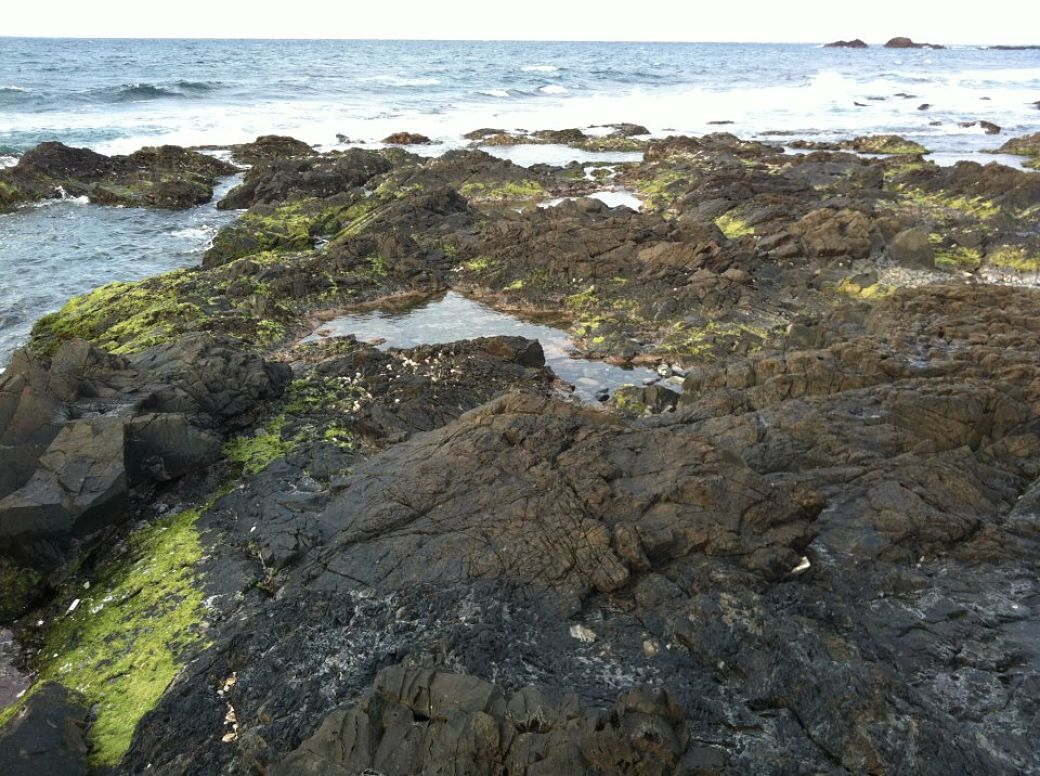 Costa isla de Yakushima