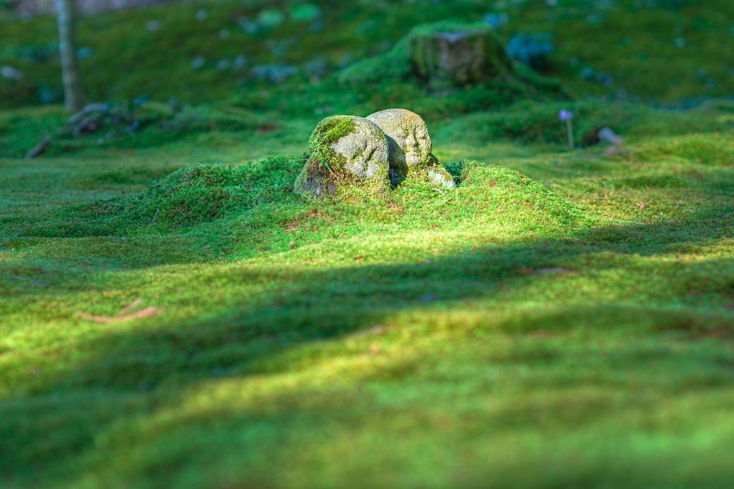 Dios japonés Jizô en una pradera