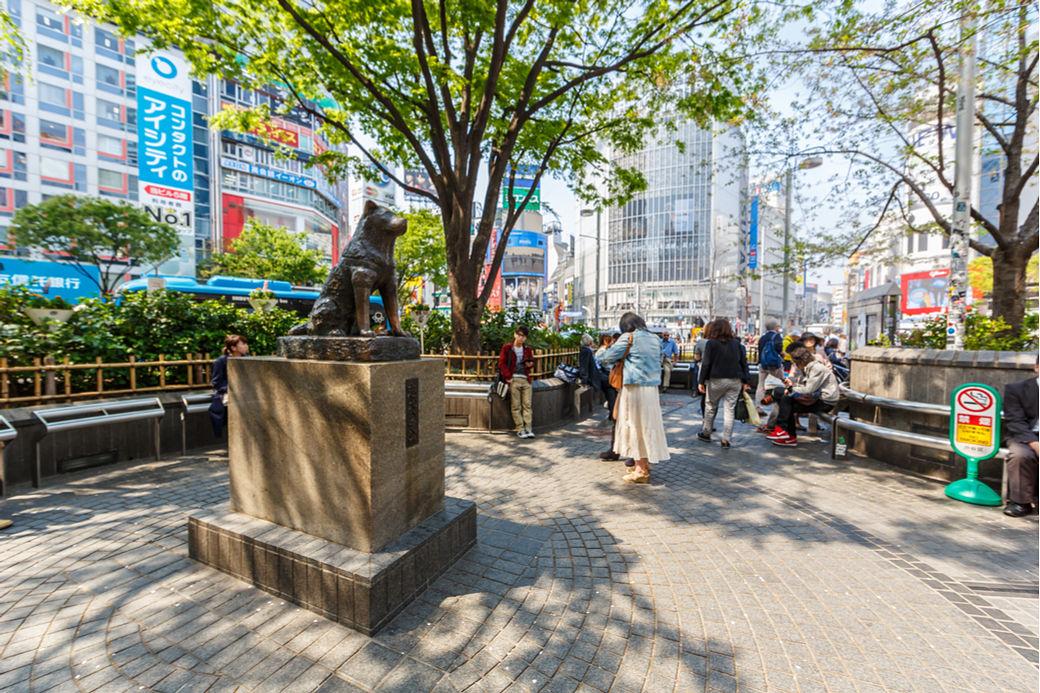 Estatua de Hachiko en Shibuya, Tokio