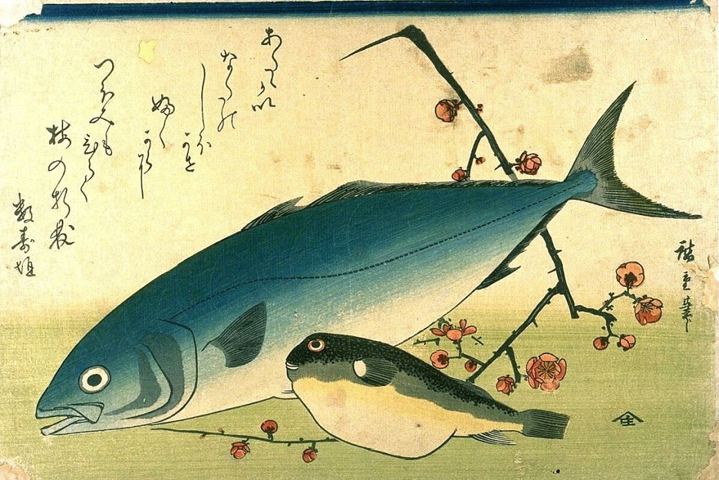 Ilustración de Hiroshige en la que aparece un pez globo
