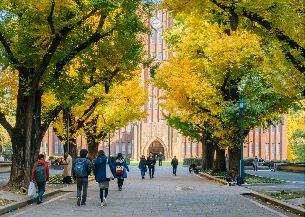 Aprender japonés en una universidad del país asiático