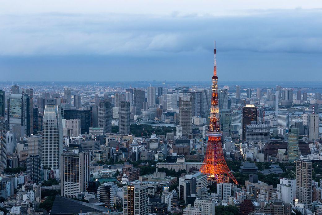 Panorámica ciudad de Tokio