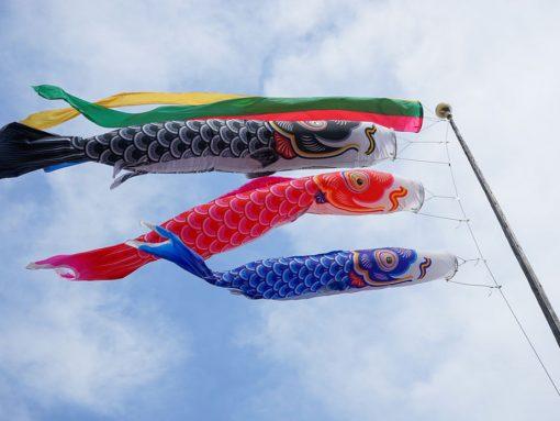 Carpas de colores para celebrar el día de los niños en Japón