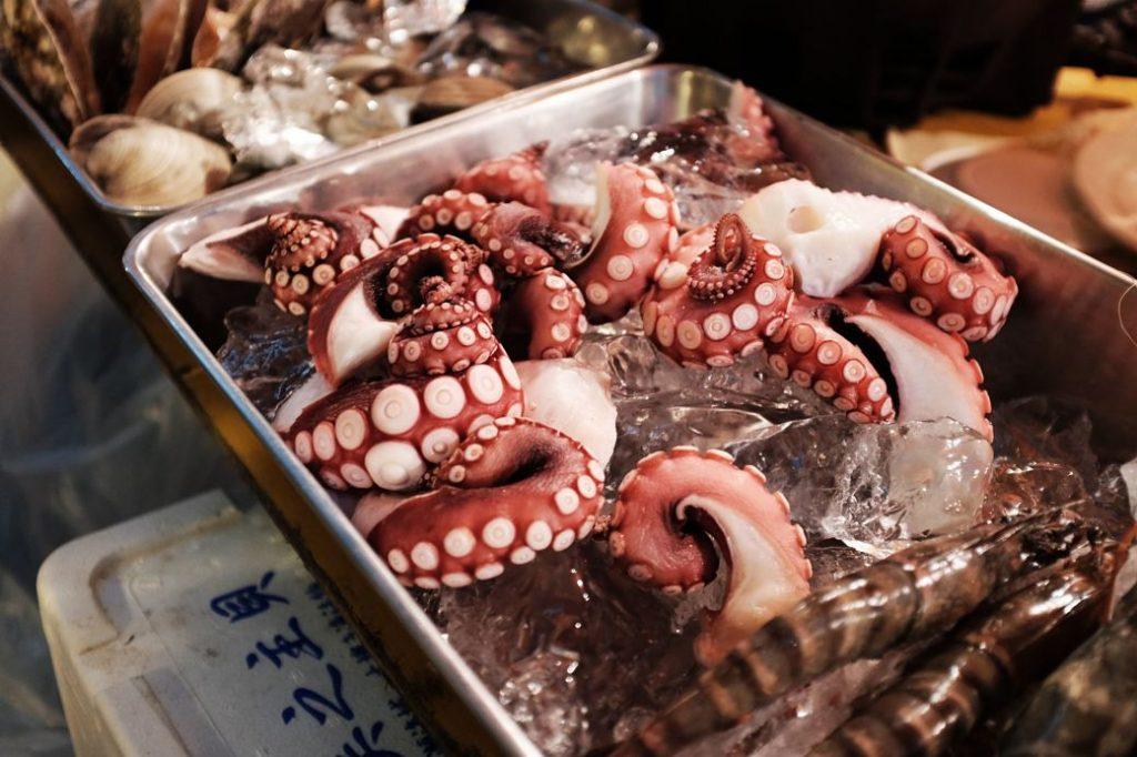 Imagen de tentáculos de pulpo dentro de una plata con hielo