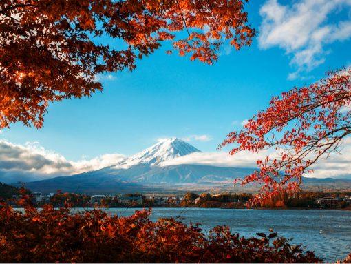 Paisaje Monte Fuji en otoño con hojas rojas